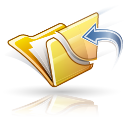 FileRescue Professional4.13 破解版
