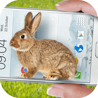 bunny in phone cute joke软件下载v1.0 安卓版