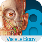 visible bodyv3.1.3 免费版